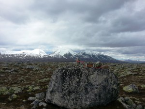 Ørsjøvola 968 moh