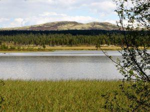 Veslesølensjøen, utsikt mot Triklettan.