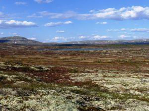 Utsikt fra Klettane mot Storhøgda og Borveggen.