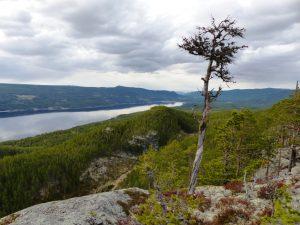 Utsikt fra Skarkampan utover Storsjøen.