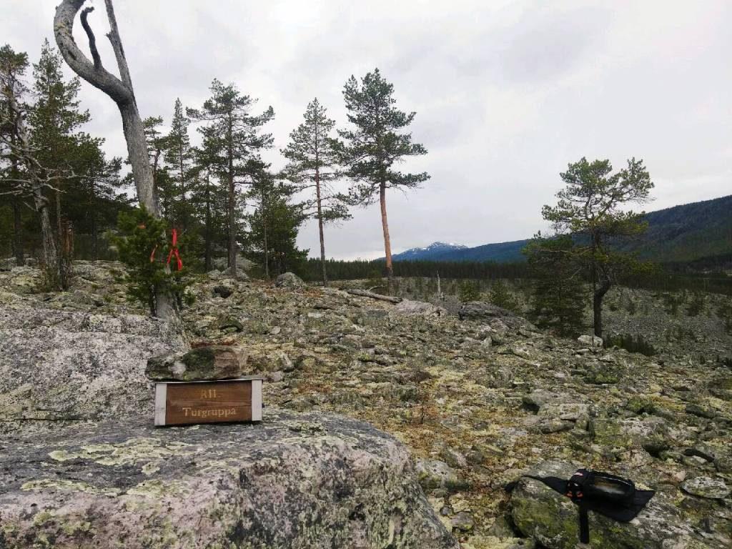 """Utsikt fra """"Brannflata"""" sør for Jutulhogget. 477 moh."""
